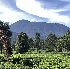 Gunung Pangrango captured by adrianyudharamadhana.jpg