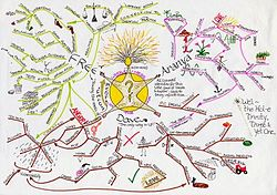 Mind maps are used to get lots of ideas into one idea