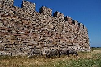 Eketorp - Eketorp exterior wall with sheep grazing