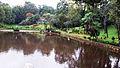 Guwahati Park.jpg