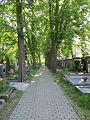 Hřbitov Střešovice 07.jpg