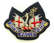 HAC Officers Beret Badge