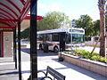 HARTline Bus 4.jpg