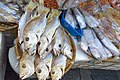 HK 長洲 Cheung Chau 新興海傍街 San Hing Praya Road May 2018 IX2 dried salted fishes.jpg