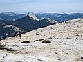 Half Dome. Looking south, towards Mt. Starr King. - panoramio.jpg