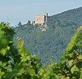 Hambacher Schloss - panoramio - Immanuel Giel.jpg