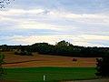 Harvest 2013 - panoramio.jpg