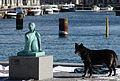 Havfrue & Hund.JPG