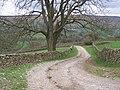 Haw Lane (East) - geograph.org.uk - 159116.jpg