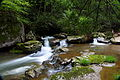 Hawksnest-mill-creek-waterfall - West Virginia - ForestWander.jpg