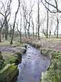 Head water of the Tamar - geograph.org.uk - 698156.jpg