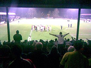 2007–08 Conference League Cup - Rushden and Diamonds fans after the full-time whistle of the final