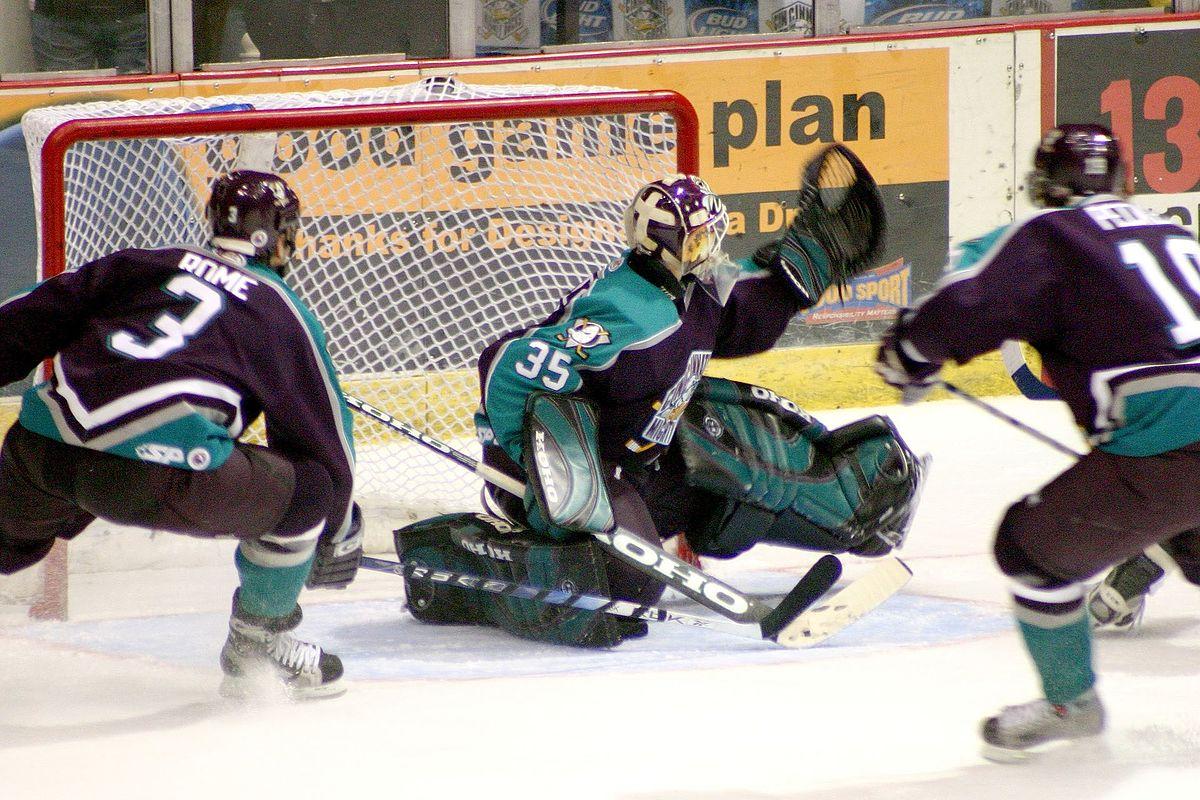 Goal Ice Hockey Wikipedia