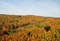 Hot air balloon over Wienerwald in autumn 02.jpg