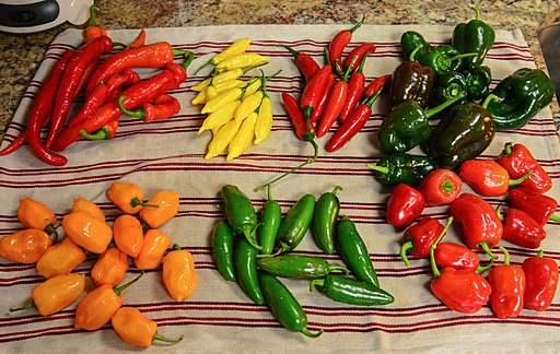 Hot peppers for jelly. Clockwise from bottom left; habaneros, hot Portugal, hot lemon, serrano, poblano, cajun bell & jalapeno
