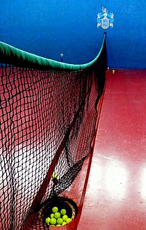 Hyde Real Tennis Court Net - geograph.org.uk - 1233115.jpg