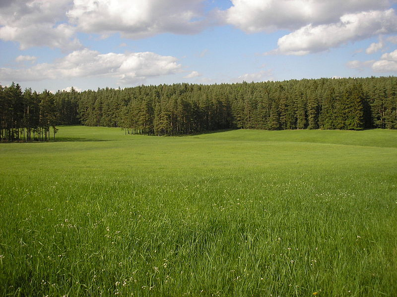 File:Ilm-Saale-Platte bei Paulinzella.JPG