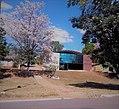 Ipê em frente a uma Igreja Adventista em Curionópolis.jpg