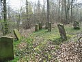 Jüdischer Friedhof, Hüweweg, Höxter OT Bruchhausen.jpg