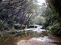 Jamison Creek - panoramio.jpg