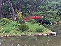 Japanese Garden Hiroshima.jpg
