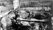 Two Japanese Imperial Marines who committed suicide by shooting themselves rather than surrender to a U.S. Marine, Tarawa, Gilbert Islands in the Pacific, 1943.