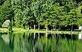 Jezero, Bosnia and Herzegovina - panoramio (28).jpg