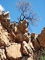 Jingemia Cave 4 - panoramio.jpg