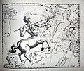 "Johannes Hevelius - Prodromus Astronomia - Volume III ""Firmamentum Sobiescianum, sive uranographia"" - Tavola XX - Centaurus et Crux.jpg"