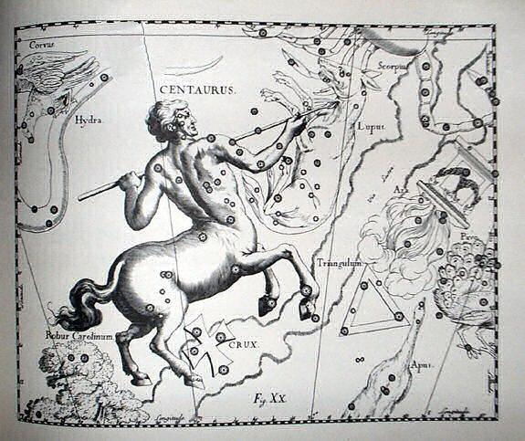 "Johannes Hevelius - Prodromus Astronomia - Volume III ""Firmamentum Sobiescianum, sive uranographia"" - Tavola XX - Centaurus et Crux"