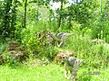 Jurapark Baltow, Poland (www.juraparkbaltow.pl) - (Bałtów, Polska) - panoramio (33).jpg