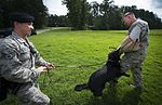 K-9 handlers, Pursuing the enemy 150729-F-IF940-017.jpg
