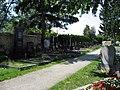 Kaiserebersdorfer Friedhof Gräberreihen 2.jpg
