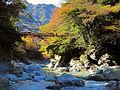 Kazura-bashi, Iya Valley 02.jpg