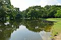 Kings Lake - Indian Botanic Garden - Howrah 2012-09-20 0073.JPG