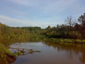 Kirzhach River - The Kirzhach River in summer