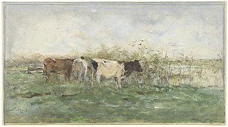 Vaches au point d'eau