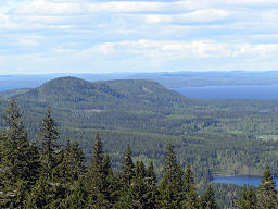 Koli hill view.jpg
