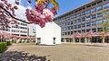 Kubus Haus der Architektur Köln, Josef-Haubrich-Hof, Kirschblüte-9702.jpg