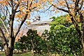 Kumamoto Castle 구마모토성 熊本城 - panoramio.jpg