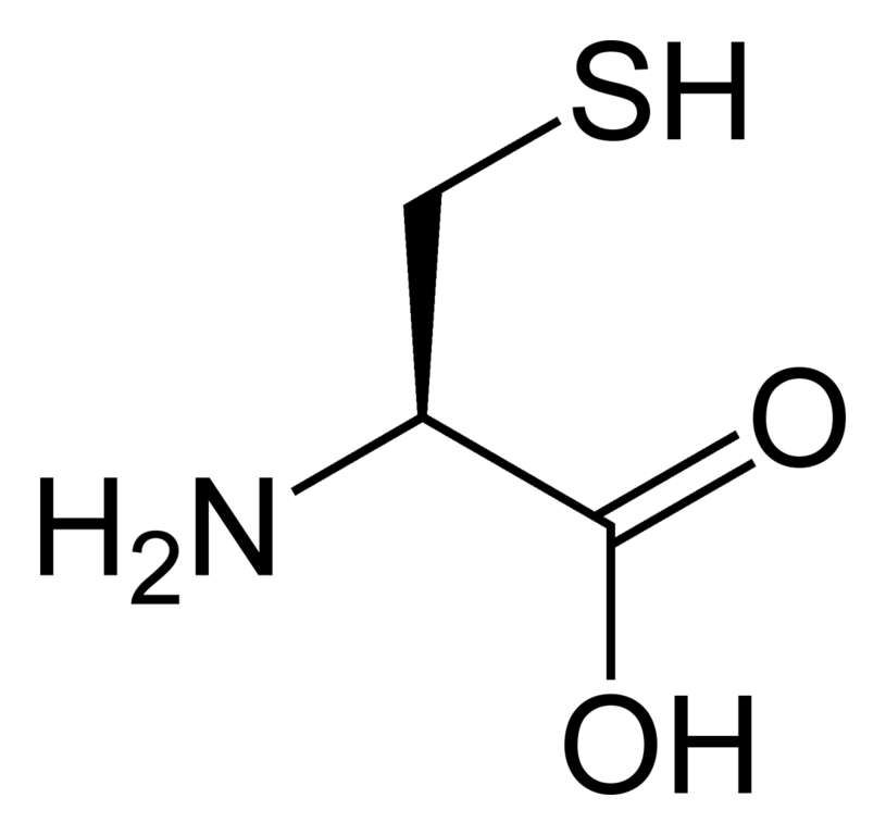 L-Cysteine and Its Hydrochloride