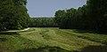 Lainzer Tiergarten (1) IMG 1478.jpg