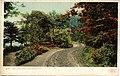 Lake Shore Road (NBY 2213).jpg