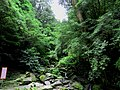 Lalashan Forest Reserve 拉拉山森林保育區 - panoramio.jpg