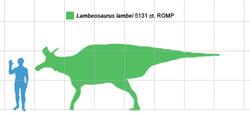 Lambeosaurus scale.png