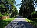 Lauliku-Street-Tallinn-2019-July.jpg