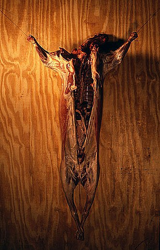 John LeKay - This Is My Body, This Is My Blood by John Lekay, 1987, lamb on wood