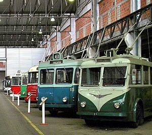 Le Havre tramway - Le Havre trolleybus 15 (in centre), among vehicles from other French cities, preserved at a museum in the Paris area