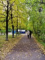 Leninskiy rayon, Yaroslavl', Yaroslavskaya oblast', Russia - panoramio (273).jpg
