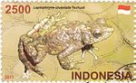 Leptophryne cruentata 2011 stamp of Indonesia.jpg